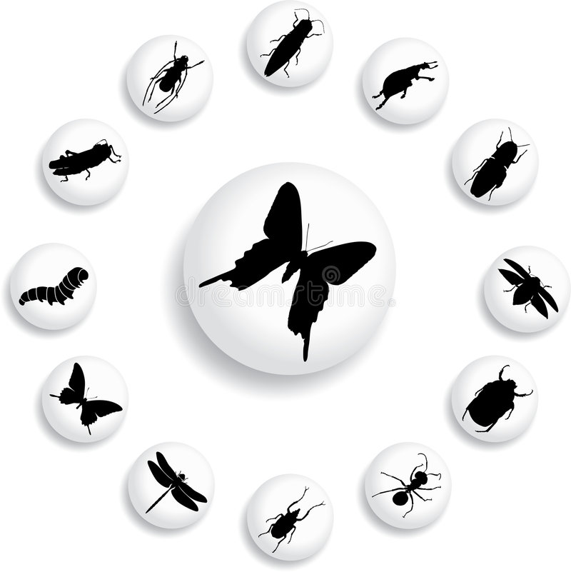Download Set Buttons - 37_B. Insects Stock Vector - Illustration of image, group: 6817442