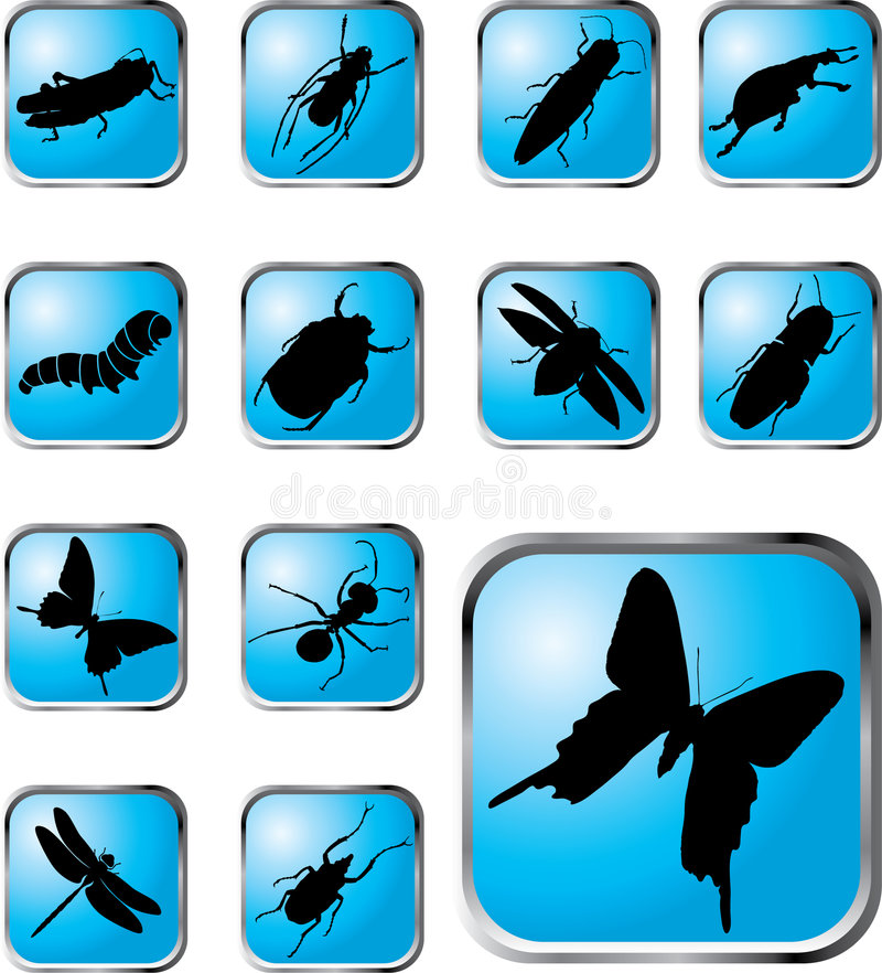 Free Set Buttons - 37_X. Insects Stock Images - 5538684
