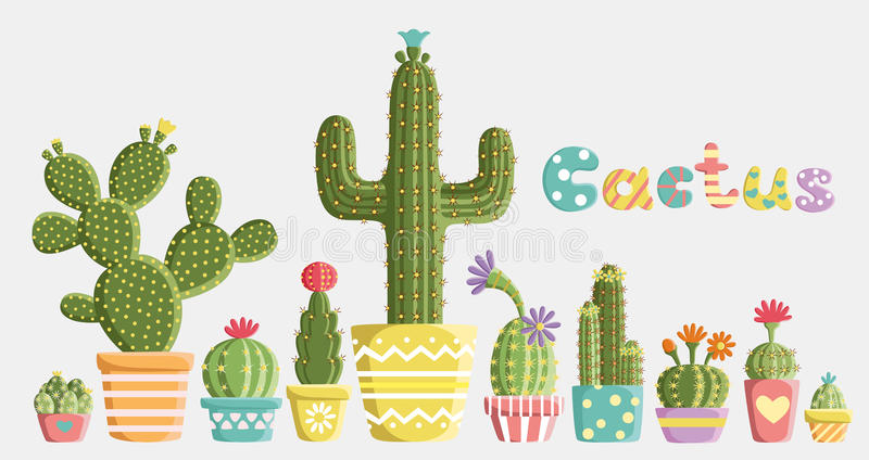 Set of cacti royalty free stock photography