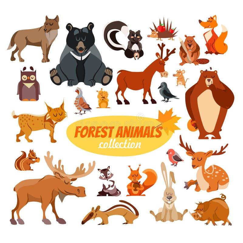 Set of cartoon forest animals vector illustration