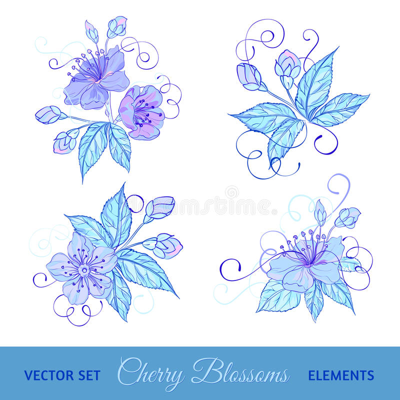 Download Set of cherry flowers stock vector. Image of drawing - 30747332