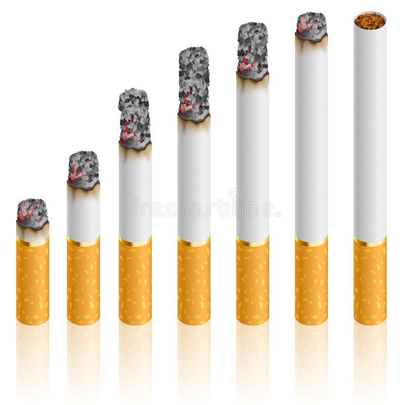 Download Set of Cigarettes stock vector. Image of health, poison - 24928809