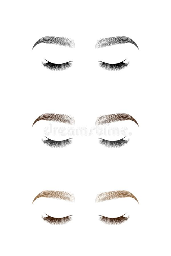 Set of closed eye with long eyelashes and eyebrows. vector illustration