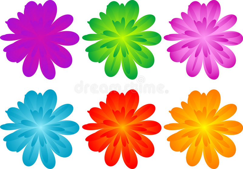 Set of color flowers vector illustration