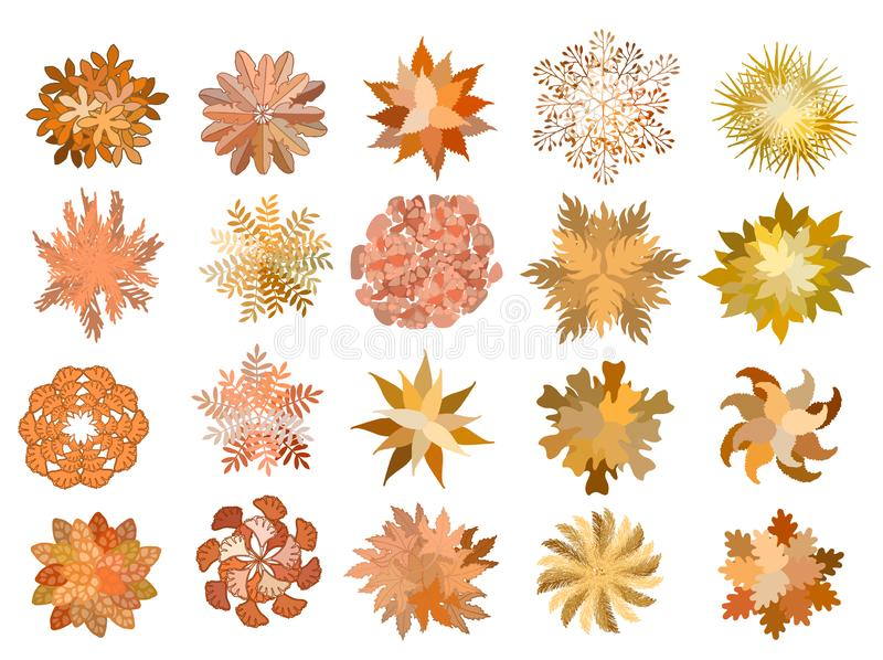 Set of colored hand drawn stylized top view autumn trees and plants. Graphic, isolated on white, vector. Set of colored hand drawn stylized top view autumn trees stock illustration
