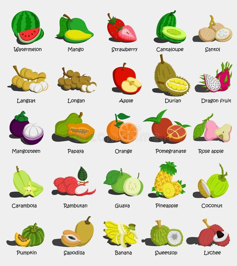 Set of colorful cartoon fruit icons Watermelon,Mango,Strawberry,Cantaloupe,,Apple, Papaya,Orange,Pomegranate,Rose apple,Guava,Pin stock illustration