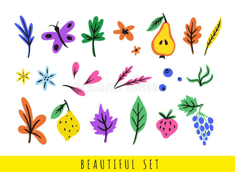 Set of colorful different leaves, flowers, berries, fruits, butterfly and petals royalty free illustration