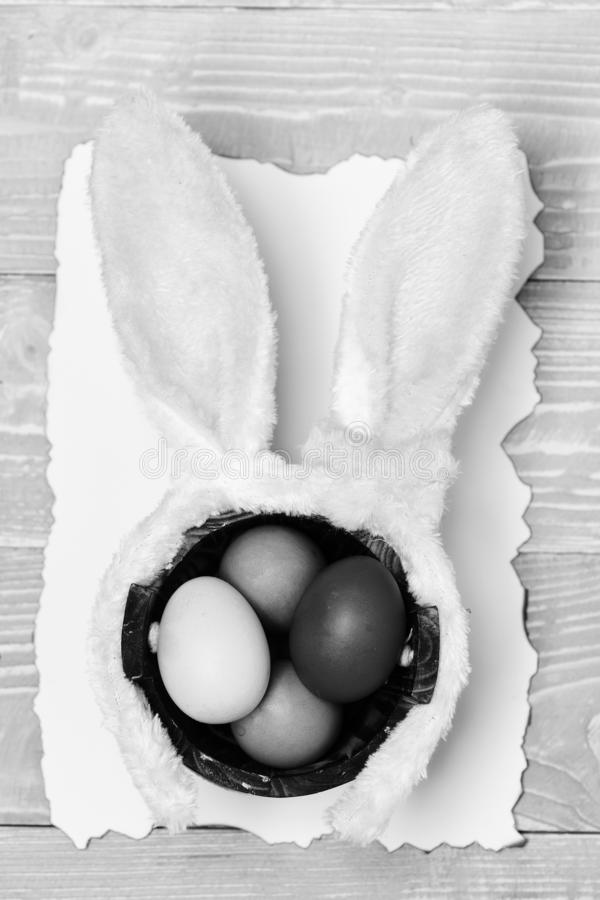 Colorful eggs inside bucket and rabbit ears. Happy Easter concept royalty free stock photography