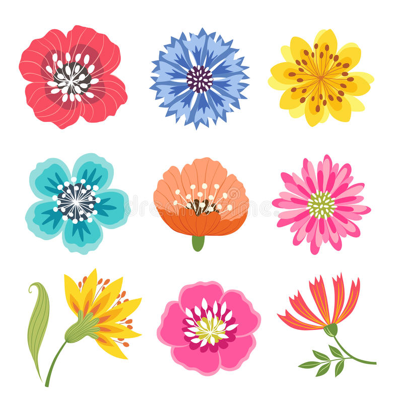 Set of colorful flowers. Set of bright colorful flowers isolated on white background royalty free illustration