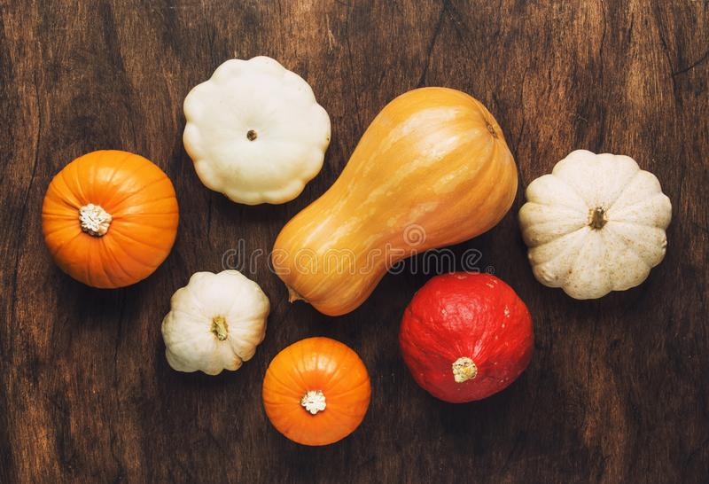 Set of colorful pumpkins on wood flat lay empty space. Fresh squashes on wooden table, rustic autumn background. Seasonal, harvest stock images