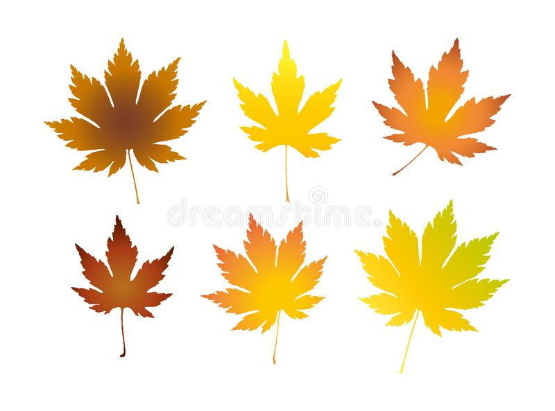 Set of colorful realistic autumn leaves. Maple leaves illustration vector illustration