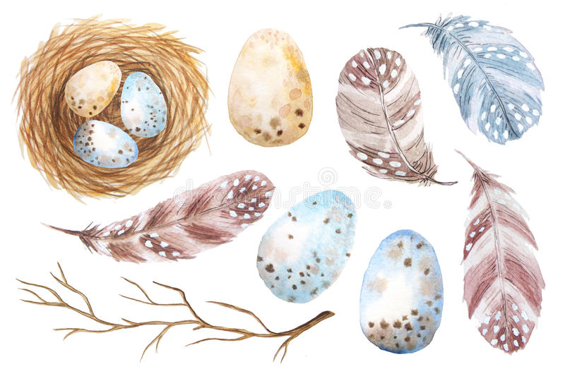 Set of colorful watercolor egg and feathers royalty free illustration