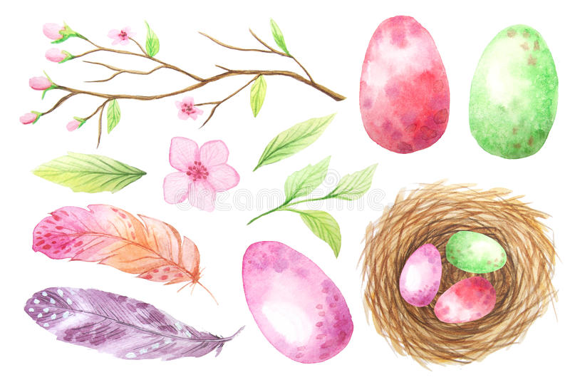 Set of colorful watercolor egg and feathers vector illustration