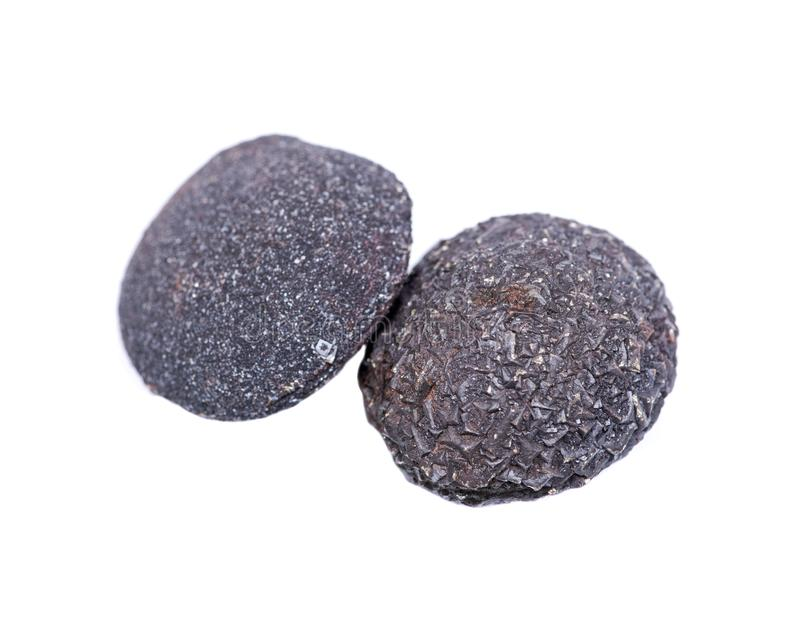 Set of concretion stones from southwest Kansas, USA. Kansas Pop Rocks isolated on white. Contains a male crystallized royalty free stock photos