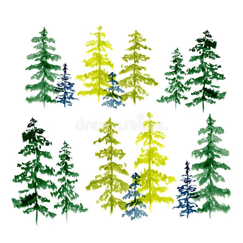 Set conifer drzewa rysuje akwarelą, ilustracja ilustracji