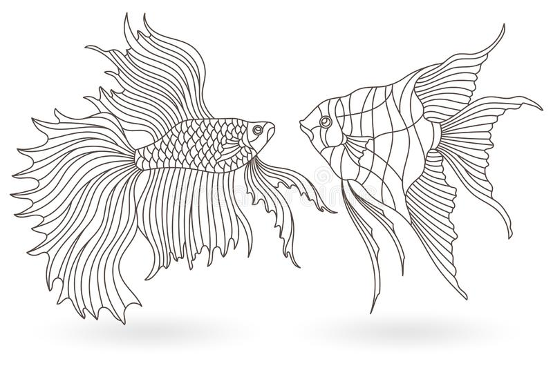 Contour set with  illustrations of stained glass Windows with aquarium fish, angelfish and Cockerel fish , dark contours on white. Set of contour illustrations stock illustration