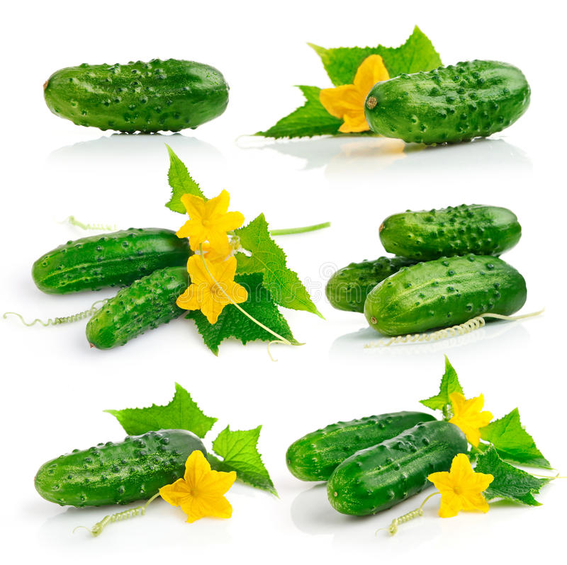 Set cucumber fruits with leaves stock photo