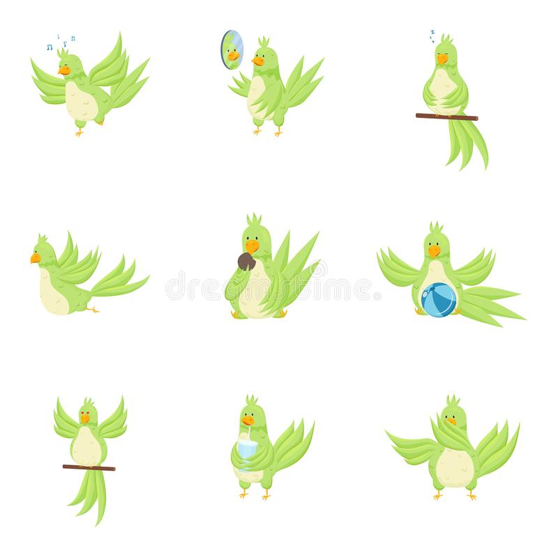Set of cute adorable green parrot in different actions royalty free illustration