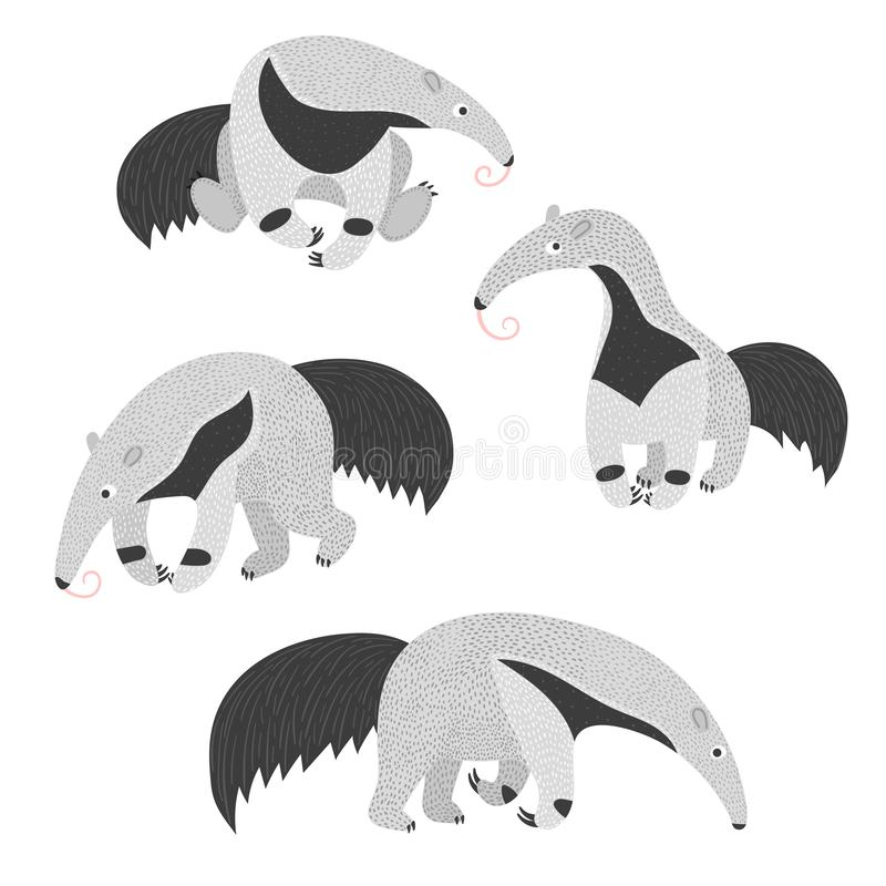 Set of cute ant eaters. Vector illustration. Set of cute ant eaters isolated on white background. Vector illustration vector illustration