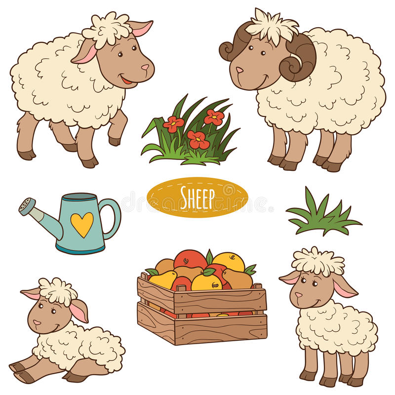 Set of cute farm animals and objects, vector family sheep vector illustration