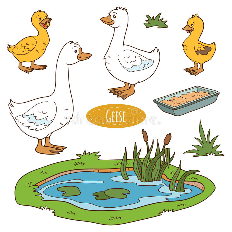 Set of cute farm animals and objects, vector goose family stock illustration