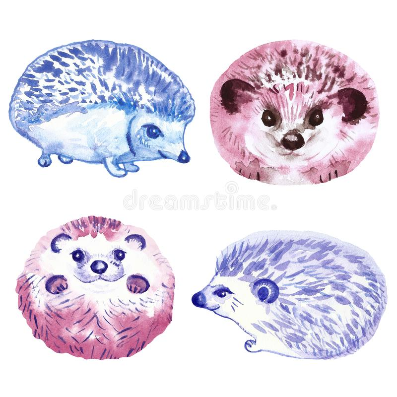 Set of cute hand painted babies hedgehogs, isolated on white background. Watercolor animal illustration in cartoon style. For cards, banners, invitations, diy royalty free illustration