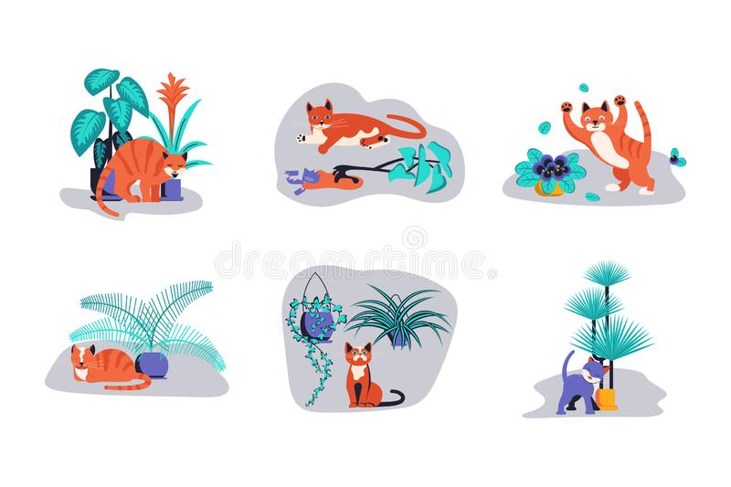 Set of Cute kitten play with houseplant. vector illustration