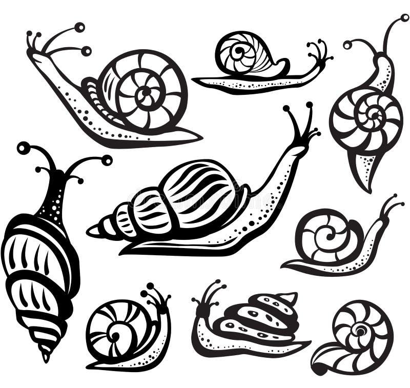 Set czarny i biały ślimaczki ilustracji