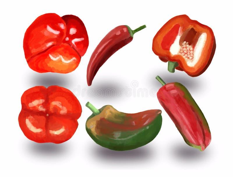 Set czerwień i zieleni słodcy chili pieprze pieprzy i gorących ilustracji
