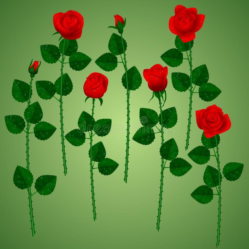 Set czerwone róże na zielonym tle ilustracja wektor