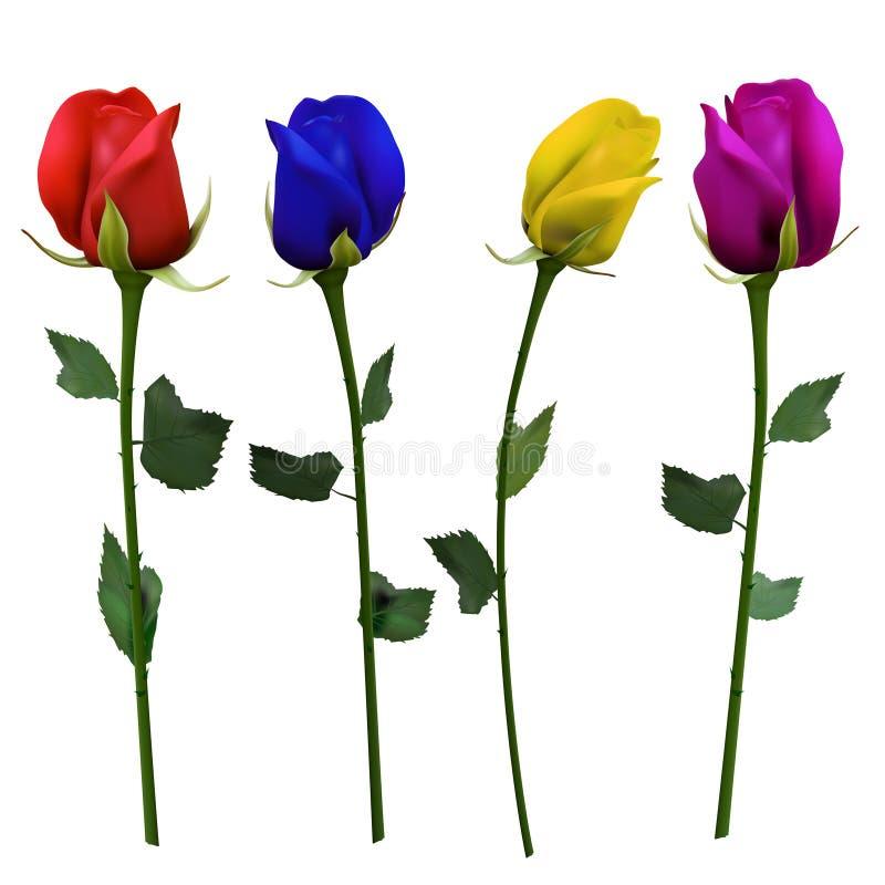 Set cztery inaczej barwiącej róży ilustracja wektor