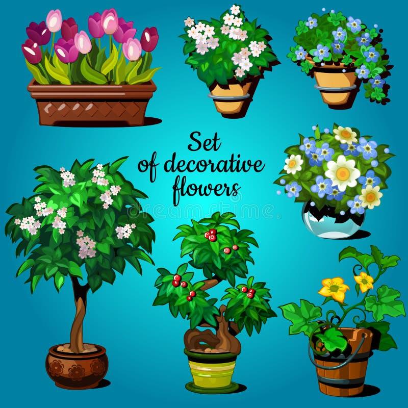 Set of decorative house plants stock illustration