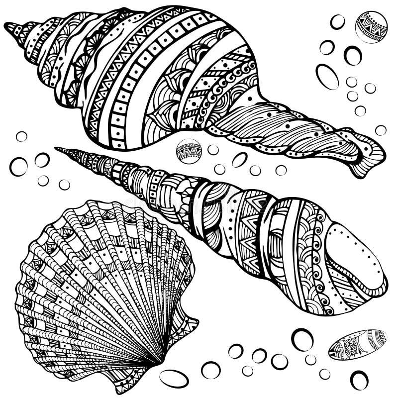 Set of decorative seashells on white background. Vector illustration set of decorative seashells on white background. Zentangl. Boho style royalty free illustration