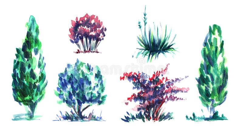 Set dekorative Elemente Thermophile Blütenpflanzen, Blumen und Sträuche des Gartens Mehrfarbige Kronen grün, purpurrot, rot lizenzfreie abbildung
