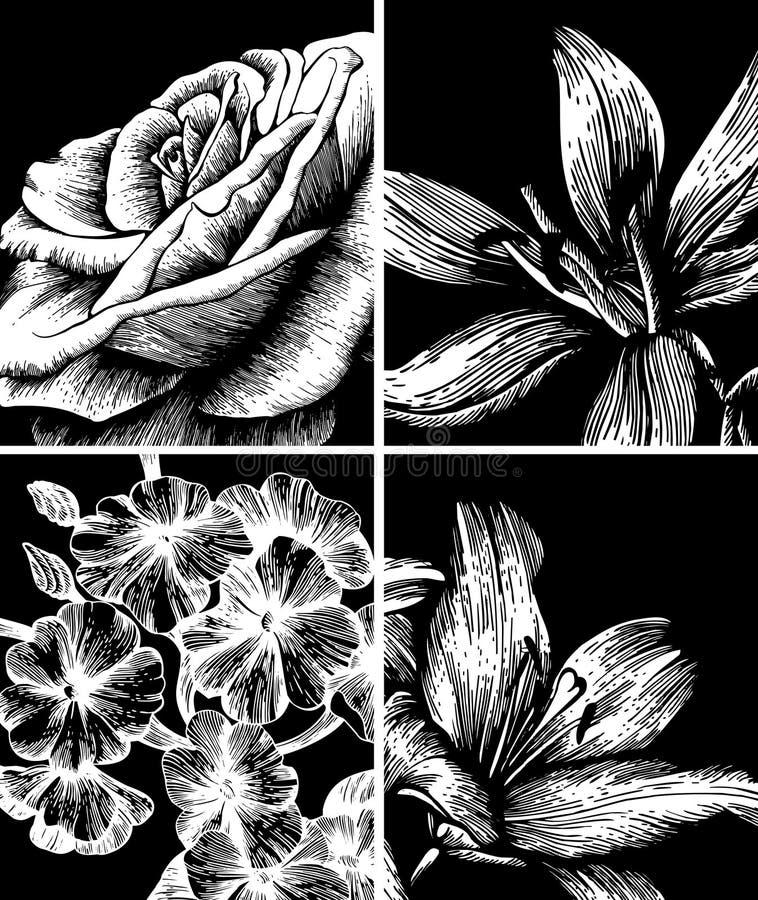 Set dekorativer Blumenhintergrund, Handzeichnung. vektor abbildung