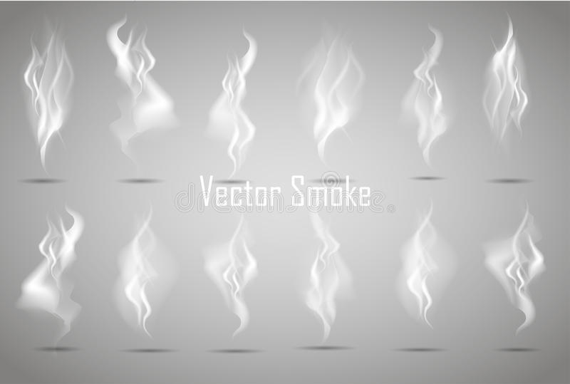 Set Delicate white cigarette smoke waves on transparent background vector illustration vector illustration