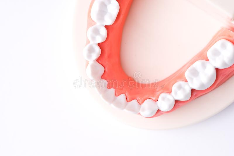 Set of Dentist`s equipment tools, denture showing implant stock photography