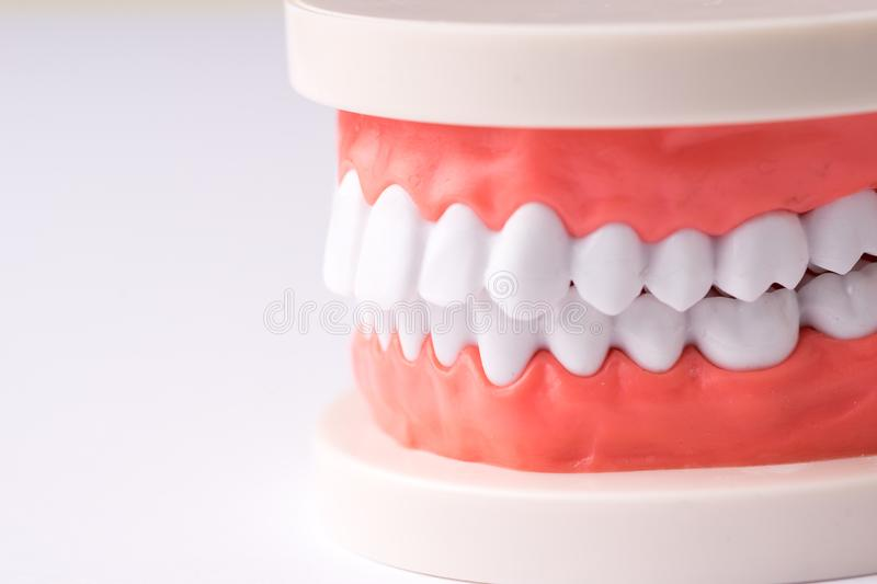 Set of Dentist`s equipment tools, denture showing implant royalty free stock photos