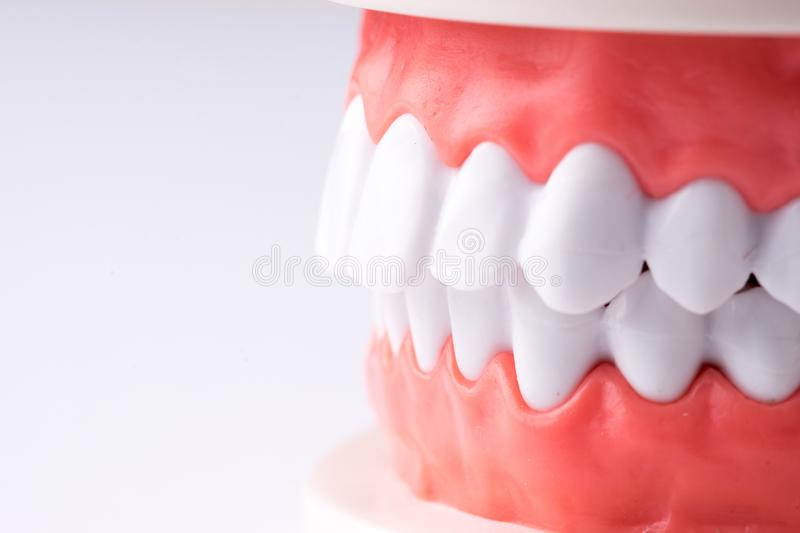 Set of Dentist`s equipment tools, denture showing implant. SONY A7 royalty free stock image