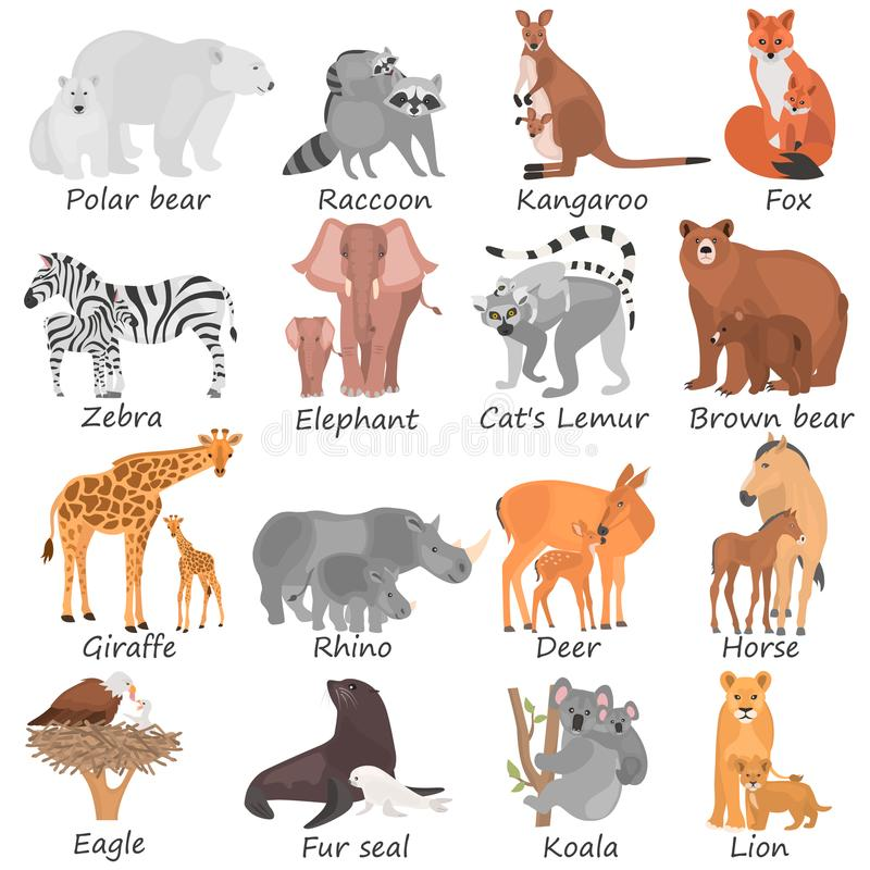 Set of different adult animals and their cubs color flat icons. Set of different adult animals and their cubs color icons stock illustration