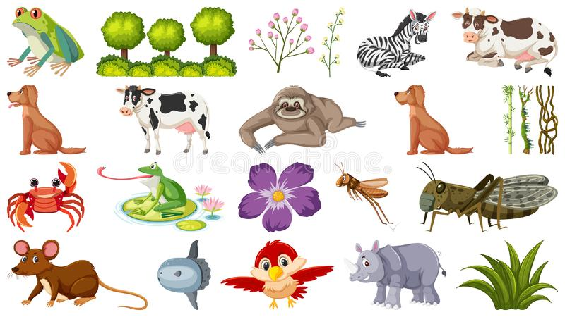 Image result for well-beinfree clipart baby animals