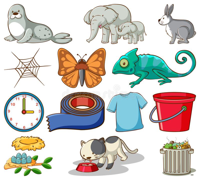 Set of different animals and other home items on white background royalty free stock photography