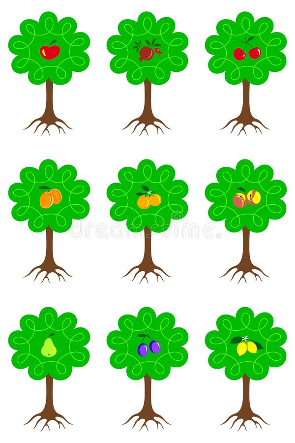 Set of different cartoon fruit trees with ripe fruits and roots isolated on white background. vector illustration