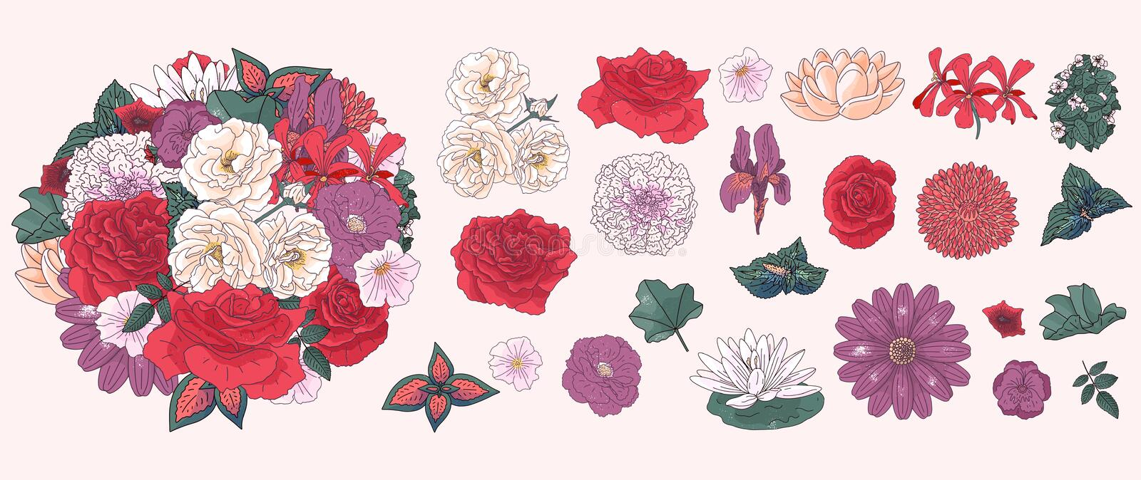 Set of different flowers in doodle style. Hand drawn elements for wedding floral design, vector illustration. Spring blossom stock images