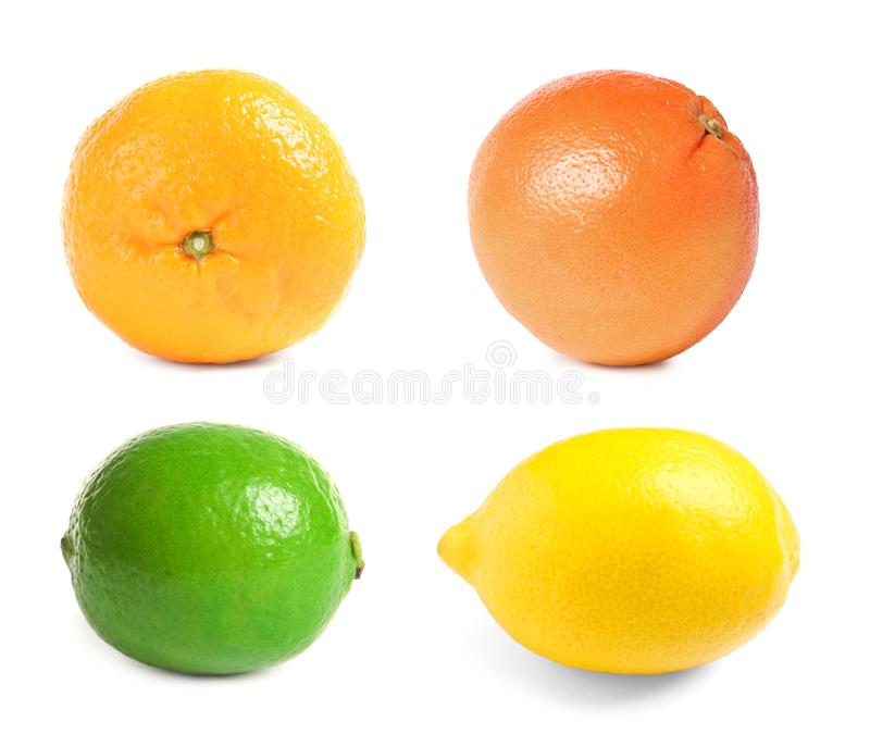 Set of different fresh ripe citrus fruits. On white background stock photography