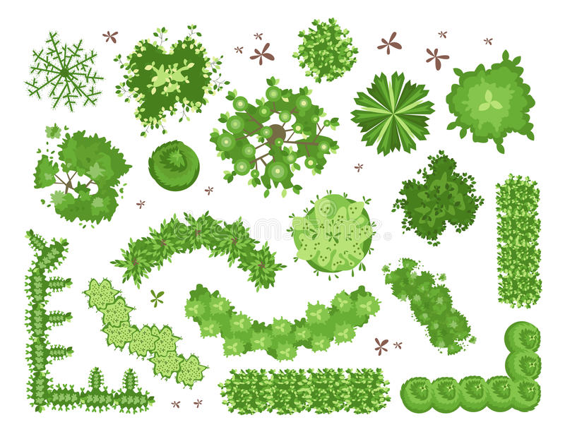 Set of different green trees shrubs hedges top view for for Garden design graphics