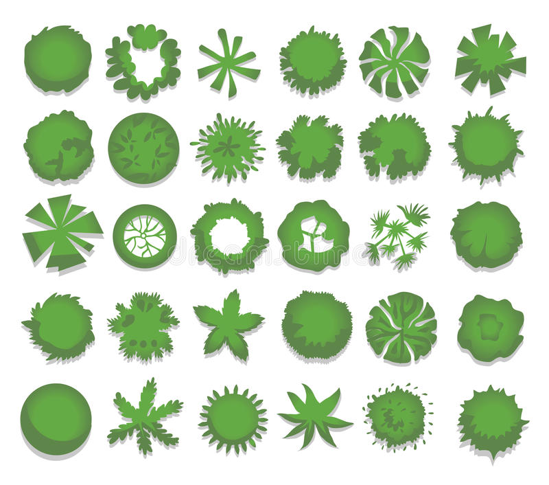 Set of different green trees, shrubs, hedges. Top view for landscape design projects. Vector illustration, isolated on. White background royalty free illustration