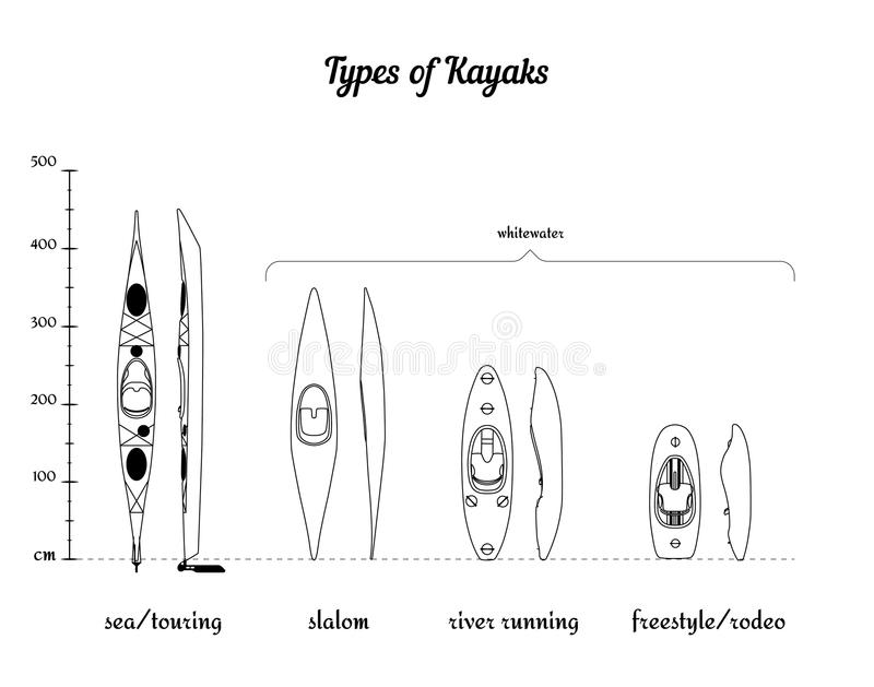 Download Set Of Different Kayak Types In Comparison Stock Vector