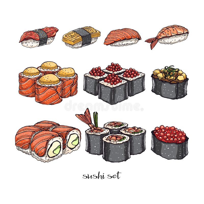 Set of rolls and sushi. Set of different kinds of delicious rolls and sushi. hand-drawn illustration vector illustration
