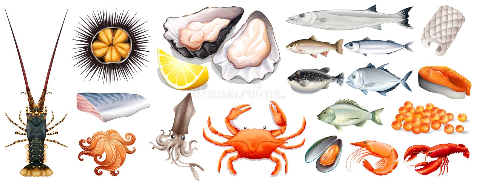 Set of different kinds of seafood royalty free illustration